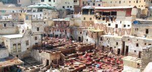 De stad Fez